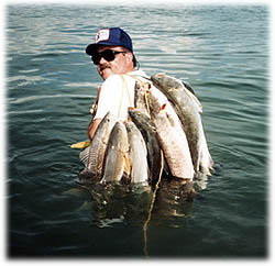 Port o 39 connor texas fishing guides port o 39 connor bay for Texas saltwater fishing report